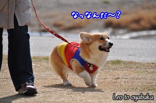 なんだ〜?.jpg