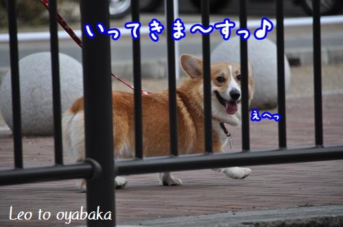 いってきま〜す♪.jpg