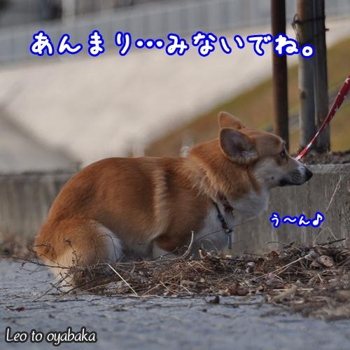 う〜ん中.jpg