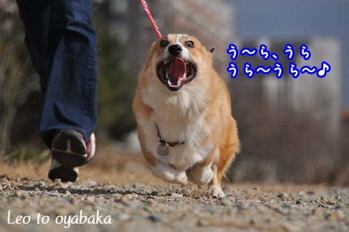 うらうらうら〜♪.jpg