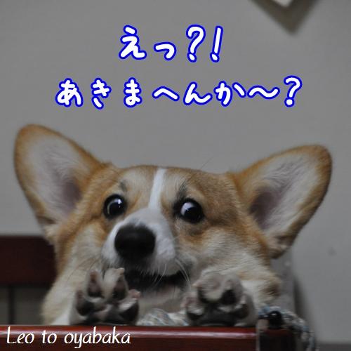 えっ、あきまへんか?.jpg
