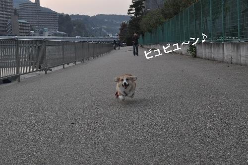 びゅびゅーん!.jpg