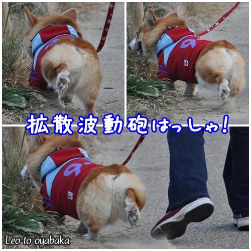 拡散波動砲発射.jpg