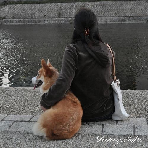 川辺1.jpg