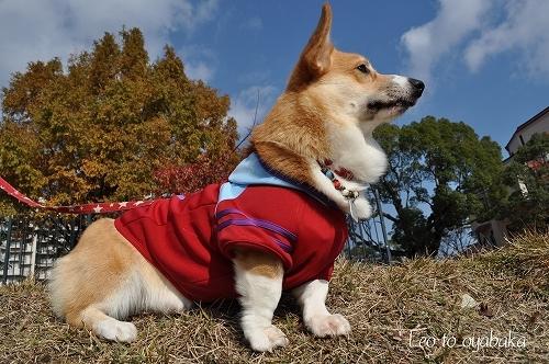 風が冷たいね〜.jpg