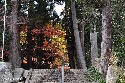 鷲林寺2.jpg